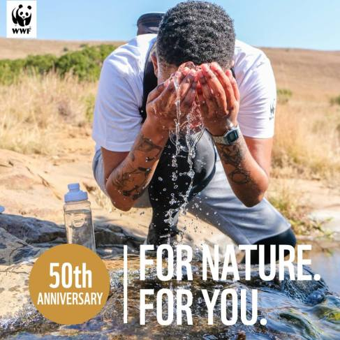 WWF 4